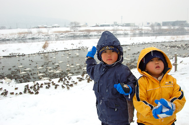 子供も寒さは関係ないみたいである…
