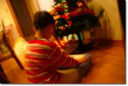 クリスマスの1ショット。ISO200,F3.5,Tv=1/1.2…