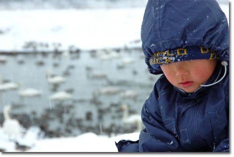 今年1月。厳寒の福島,阿武隈川沿いで雪遊びをするユウキチ。見てるだけで寒い~