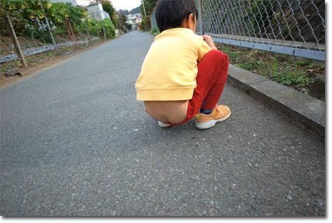 道路でうん,いや,何かを探しているカズボン。