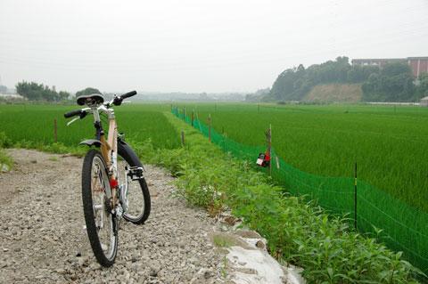境川の上流へ15kmほどサイクリングした時。早く出かけたい~