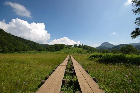 これは志賀高原の田の原湿原。みんなでトレッキングしました。