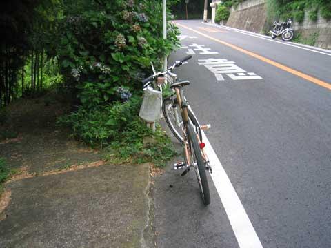 鎌倉山の急坂(の手前の普通坂)。左の下り道に気が取られてしまう・・・。
