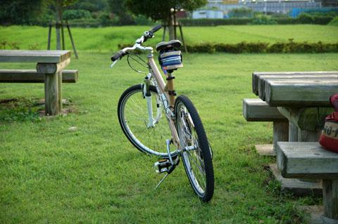 引地川公園は芝生もキレイ。チビ達も一番のお気に入り。