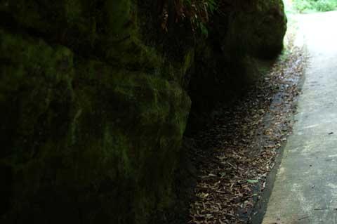 見よこの角度! 石垣の隙間の線が水平線です。階段にした方が・・・。