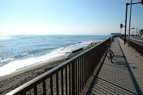 そしていつもの海岸を通って帰ります。