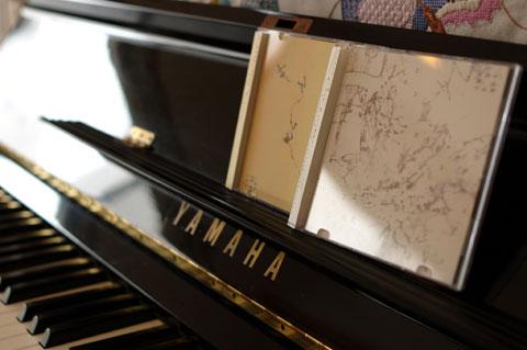衝動買いした「イヌイルカ」のCD×2枚(ライブ写真は無いのよ・・・。未だに悔やまれるナリ)