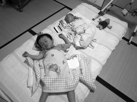 昼寝する3匹(ユウキチ+カズボン+クマ,2001年)
