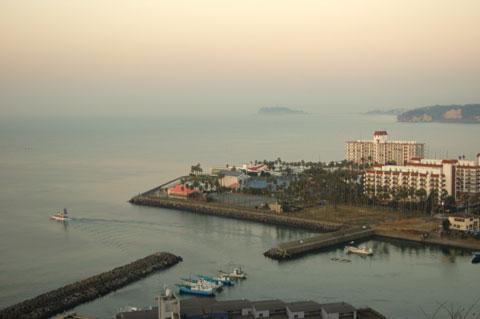 眼下に逗子マリーナ,遠くに江ノ島,さらに遠くに富士山,,,が見えない。