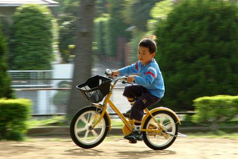 チビ達は既に自転車のトリコ。なぜ,こんなに好きなんだろう・・・?