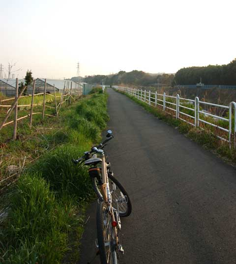 境川CRの典型的風景。10km走っても変化なし。