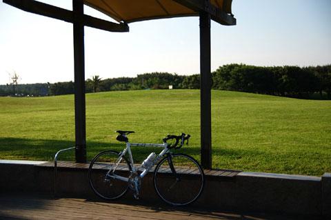 辻堂海浜公園。ここはいつも空気がキレイで大好きです。