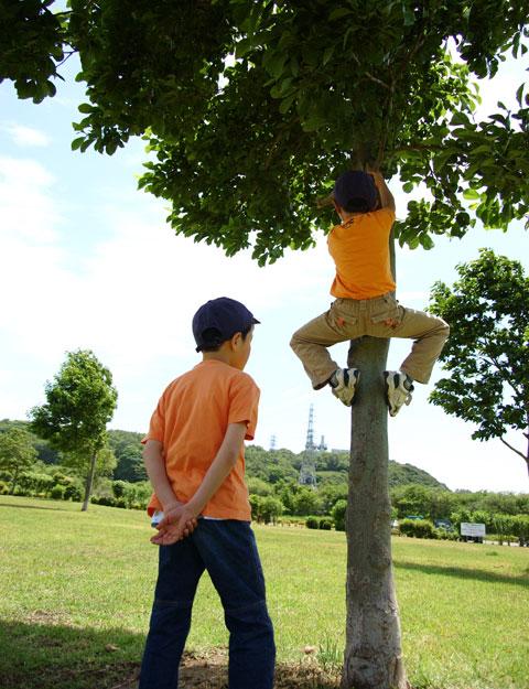 さすが,猿型小学生,カズボン。木登りはかなり得意です。