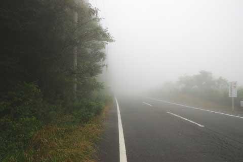 ものすごい濃霧。そして途中からは小雨。寒かったよぉ・・・。
