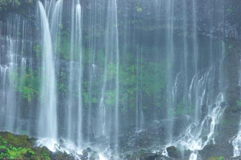 本日最大の見せ場,「白糸の滝」。 でも,これだけなら,コンデジで良かったのでは・・・
