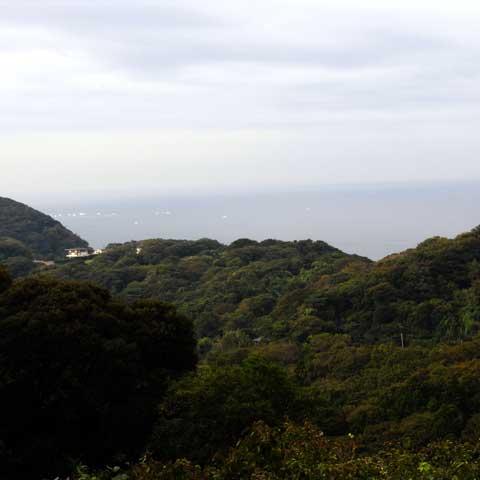 湘南国際村から立石方面を望む。結構,山だらけ。