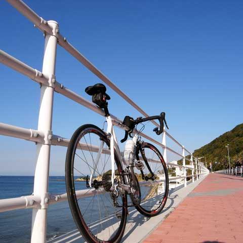 朝飯前に立石まで。往復およそ50kmだって自転車なら平気です。
