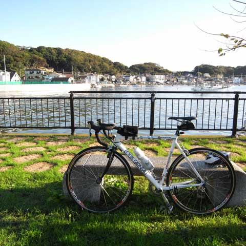 のんびりした佐島港。半島はええなぁ…