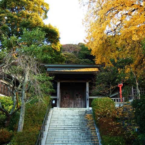 荏柄天神社の紅葉はまだ少し残っていました。