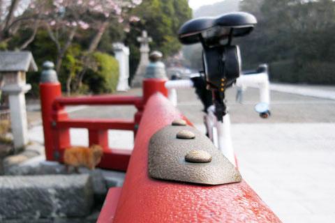 鶴岡八幡宮到着。昨晩の夜露が残っています。