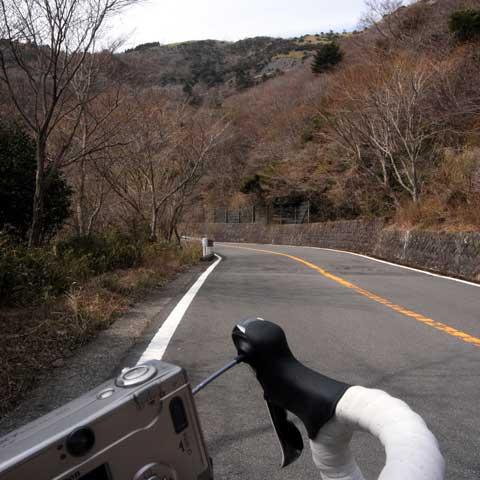 椿ラインの特徴。それは「長いこと」。遙か前方の山の上にも,これから通る道の白いガードレールが……。