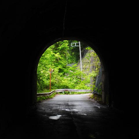 国境のトンネルを抜けると……,裏ヤビツの新緑であった(^^) 【フォトアルバムはこちら!】