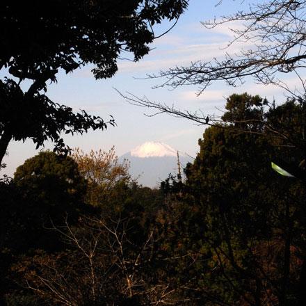 源氏山公園からは,富士山をのぞき見できる秘密スポット(?)があります。