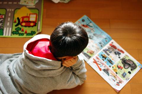 トイザらスのチラシで検討する長男坊。毎年,この時期の風物詩である。