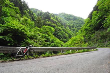 細い山道はたいてい静かです(ヤビツ峠)