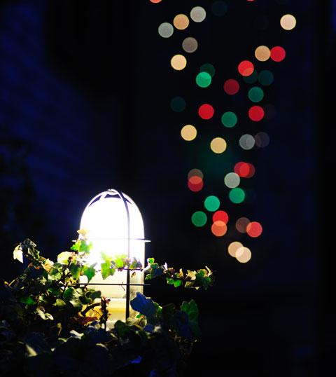 日も落ちました。いまだにクリスマスツリーを出している家も珍しかろう。片づけるか・・・。