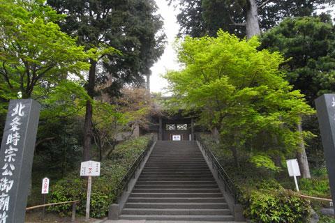 円覚寺です。新緑が目にしみます(^^)