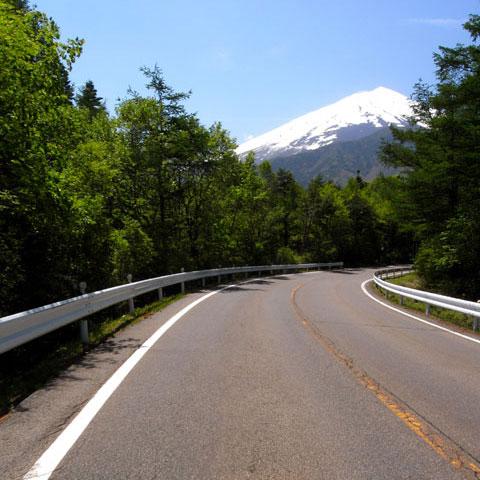 今日は暑いくらいの快晴。ず~~~っと,富士山を拝むことができました。ありがたや~