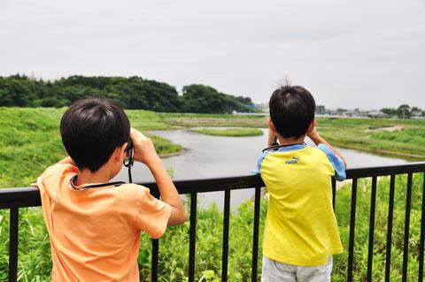 野鳥観察にいそしむご子息達。双眼鏡は無料で借りられます(^^)