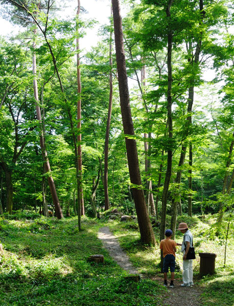 実家,福島の森で探検する長男とばーば。カブトはいないかな?