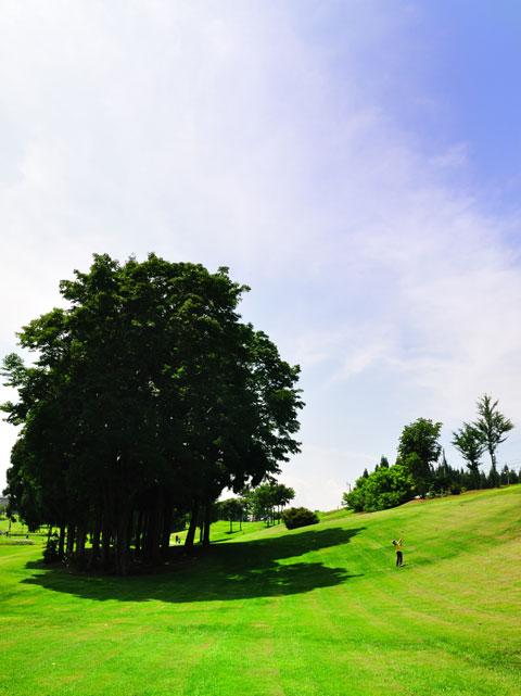 スナッグゴルフ(テニスボールを打つゴルフ)に初挑戦。打っているのはユウキチ君。思いの外楽しかった~!!