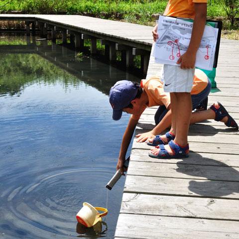 親水公園の沼で水を採取中のチビ達。カメラマンのパパも含めて汗だくである・・・。
