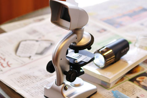 今回の秘密兵器,新聞の購読ポイントで貰った顕微鏡(売価3000円ほど)