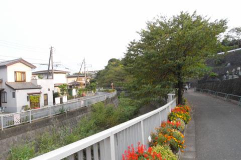 境川と違い,引地川は一般道を走ることが多くなります。