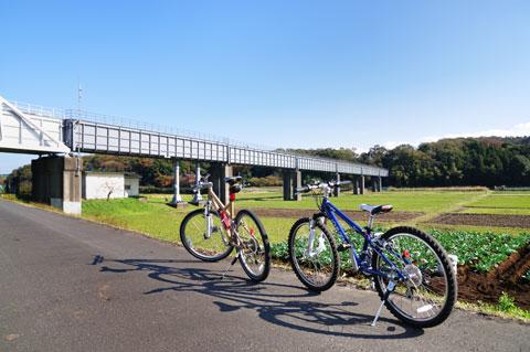 おぉ,実に40日ぶりに自転車に乗りました!! 手前はカズボンJ24,奥がおいらのLGS SIX号。