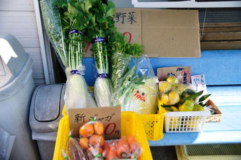 入り口のベンチ脇で野菜即売がされていました。