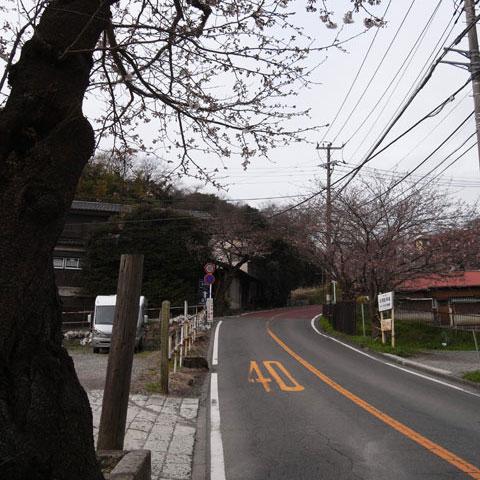 鎌倉山への道。常磐口からは最大斜度20%近くもあります・・・。