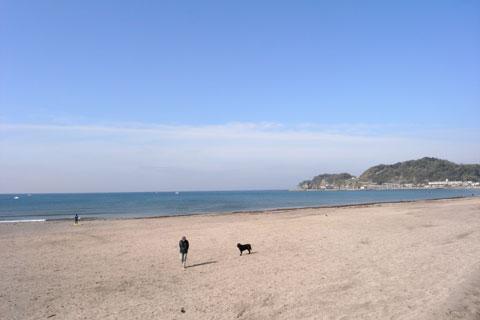 今朝は時間が早かったせいもあり,由比ヶ浜はまだ人気もまばら。いいとこだなぁ・・・。