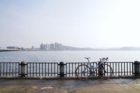 LOOK号では初の江ノ島上陸です。海岸の公園から本土(?)を臨みます。