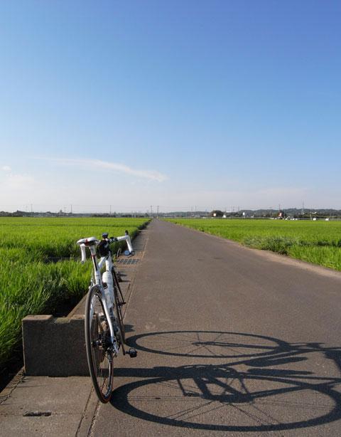 北海道,,,じゃなくて,座間です(^^)