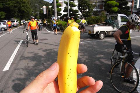 PHOTO OF THE MONTH(本当か?) フジエコのバナナです(^^)