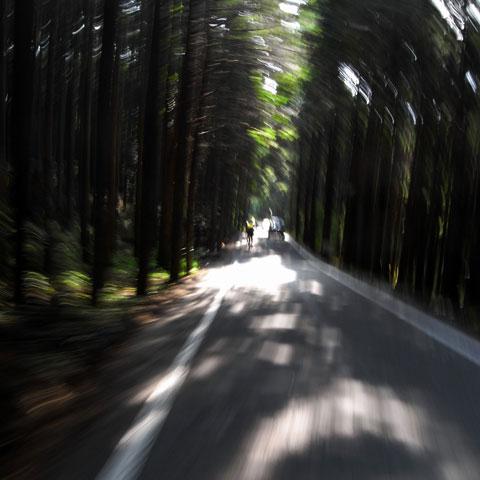 途中,わずかながら下り坂もあります。写真を撮ると,なぜかムンク風に(謎)