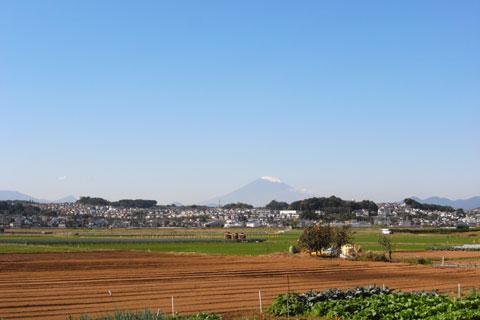 遠くには冠雪した富士山。今近くに行くからね~(←そんなに近くまではいかない)
