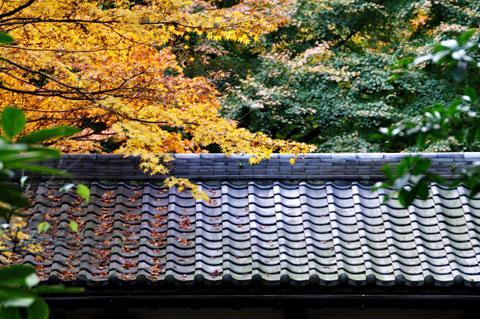 名月院の入り口の屋根です(^^)