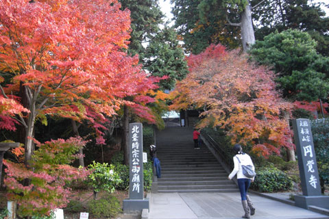 先週より紅葉が進んだ円覚寺前で一休み(ドラ焼き)
