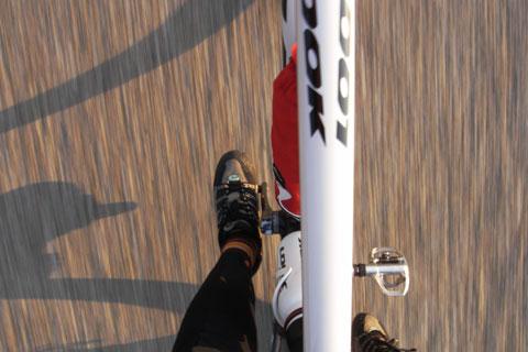 こんな感じで走っています。@引地川公園